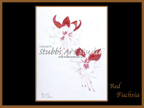 This is the enlarged image of the Red Fuschia Fine Art Print